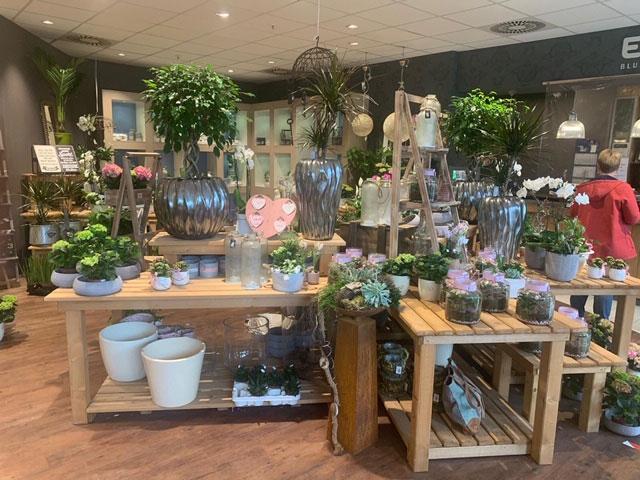 Evergreen Shop